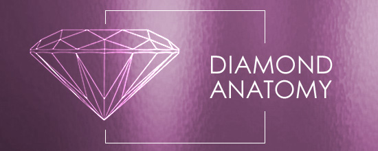 diamond cuts anatomy