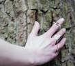 designer-rings
