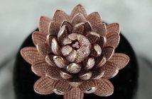 Guinness world record diamond flower ring